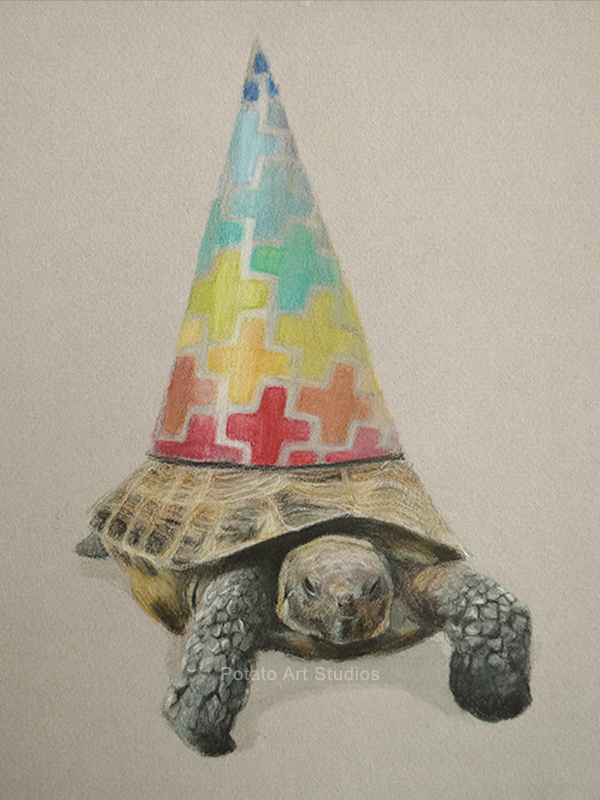 Tortoise Party Hat Portrait Drawing Colored Pencil Coloredpencil Prismacolor Potato Art Studios