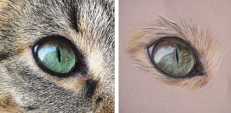 how to draw a cat eye extended version potato art studios