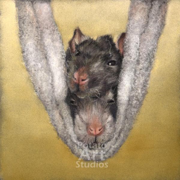 rats rat Pastel pencil conte stabilo carbothello Derwent faber castell PITT Sennelier portrait drawing realism potato art studios